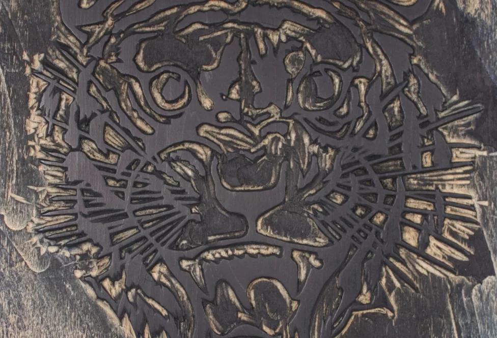 detail of tiger